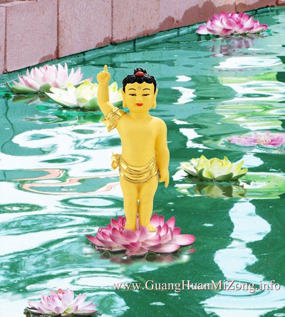 wm-Baby Buddha